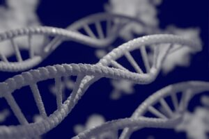 Decode Genetics